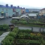 Огороды, накрытые сетью